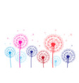 colorful graphic dandelions on a white background vector image vector image