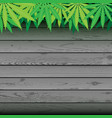 hemp and gray plank wooden background vector image