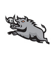 Wild Pig Boar Jumping Isolated vector image vector image
