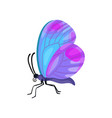 beautiful colorful butterfly insect vector image
