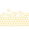 honeycomb design vector image