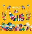 mexico vector image vector image