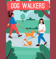 poster dog walkers concept female vector image vector image
