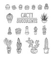 set of doodles cactus and succulent icons vector image