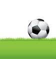 soccer ball football in grass vector image vector image