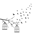 birds fly vector image vector image