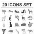 different animals monochrome icons in set vector image vector image