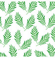 green palm branch frond decoration pattern vector image