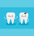 happy healthy tooth and moody tooth with cavity vector image vector image