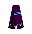 isolated winter scarf vector image