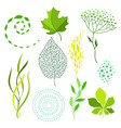 set of various stylized green leaves and elements vector image
