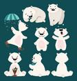 set polar bears collection cartoon polar vector image vector image
