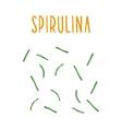 Spirulina vector image vector image