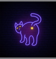 violet neon cat sign bright light silhouette vector image vector image