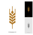 wheat luxury grain and bread labels nature wheat vector image