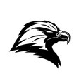 bald eagle icon vector image vector image