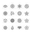 flowers flat line icons beautiful garden plants vector image