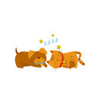funny dog and cat sleeping on the floor cute vector image vector image