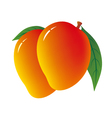 Mango on white background vector image vector image