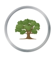 Oak icon in cartoon style for web vector image vector image