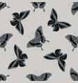 seamless pattern with hand drawn stylized papilio vector image