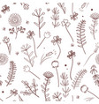 seamless pattern with wild meadow herbs vector image vector image