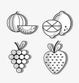 set fresh organic protein nutrition vector image vector image
