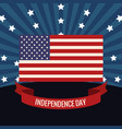 independence day flag usa image vector image