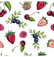 BerryPattern51 vector image vector image