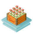 Color isometric icon with case of beer with