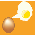 eggs vector image vector image