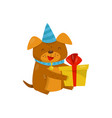 funny dog in party hat sitting on the floor with vector image