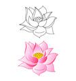 lotus vector image vector image