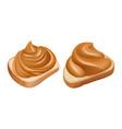 peanut butter sandwiches realistic peanut vector image