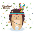 porcupine woodland animal with feather crown vector image vector image