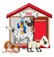 set pet with its house vector image vector image