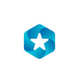 star hexagon logo icon badges vector image