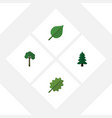 flat icon ecology set of alder evergreen linden vector image