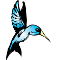 Blue hummingbird vector | Price: 1 Credit (USD $1)