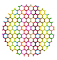 Multi Colors of Hexagon on Circle Background vector image