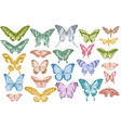 set hand drawn pastel papilio ulysses vector image vector image