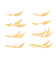 wheat ears and oats spikes icons set vector image vector image
