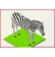 Zebra flat isometric 3d vector image vector image
