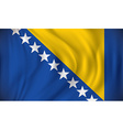 Flag of Bosnia and Herzegovina vector image vector image