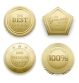 Polished gold metal badges vector image vector image