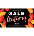 autumn sale design flyer vector image vector image