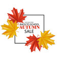 back to school sale poster fall promotion vector image vector image