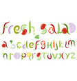 fresh vegetable salad typeface letters set vector image
