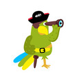 parrot in cocked hat icon vector image vector image