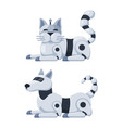robot cat and dog vector image vector image
